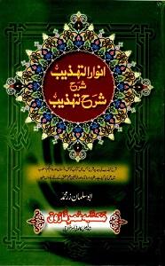 Anwaar ut Tahzeeb Urdu Sharh Sharh ut Tahzeeb