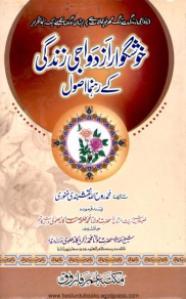 Khush Gawar Izdewaji Zindagi Kay Rahnuma Usool